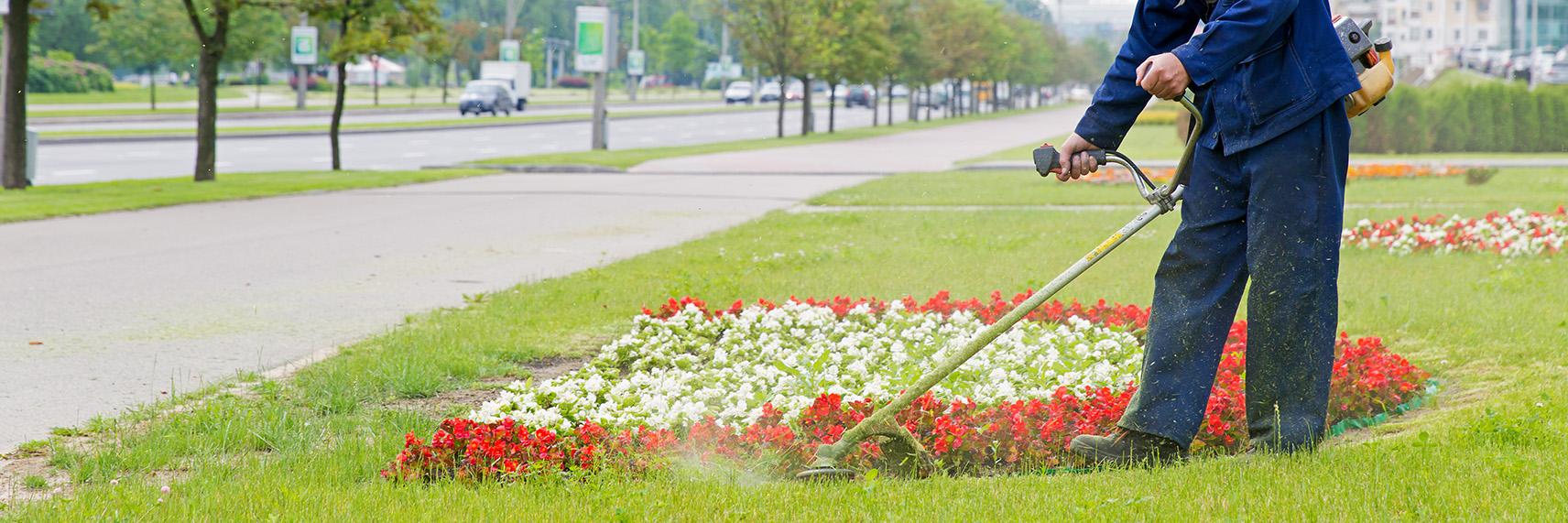 Orlando Commercial Landscape Design Services Landscape Contractors Orlando